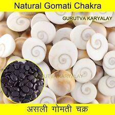 Mantra Siddha 11 Pcs Gomti Chakra Set + Free 1 Black Lakshmi Karak Hakik Agate