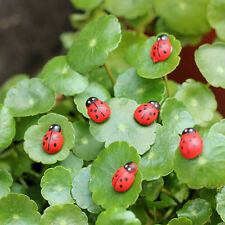 20pcs Micro Landscape Ornament Mini Cute Ladybird Simulation Doll Ornaments