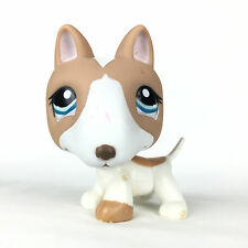 Authentic Littlest Pet Shop 1095 Dog Pit Bull / Chien Bull Terrier LPS Hasbro.