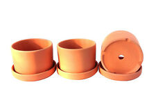 Set of 3 Clay Terracotta Round Fat Walled Garden Pots with Individual Trays