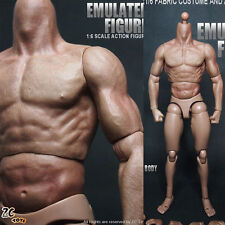 """ZC Toys 1/6 Muscular Figure Body Doll Hobbies Fit For 12"""" Hot Toys Head SCULPT"""
