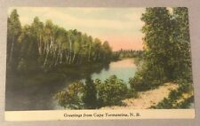 Greetings from CAPE TORMENTINE NB CANADA early divided postcard Sackville PM