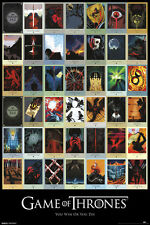 Game of Thrones Episodes single 24x36 poster HBO STARK LANNISTER LICENSED NEW!!!