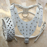 Large Breed White Leather Spiked Studded Dog Harness+Collar Set Pitbull Mastiff