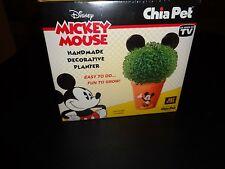 DISNEY MICKEY MOUSE AS SEEN ON TV  HANDMADE DECORATIVE PLANTER CHIA SEED PACKETS