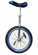 "New! In & Out Door Chrome Blue  20"" Unicycle Cycling Thanksgiving Christmas"