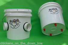 2 Gallon Poop-Free Feeder & Waterer for Chickens