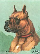 CARD BON POINT BOXER CHIEN DOG 60s