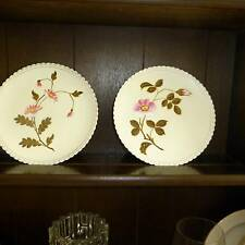 PLATES Pair of hand painted  Viena cabinet plates -just wonderful