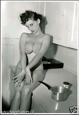 Donna May Brown 1960s Large breasts vintage nude Pinup 8 x 10 Photograph