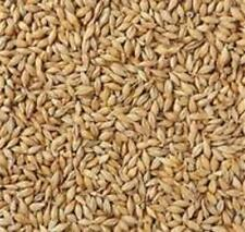. Moonshine Mash Blended Cracked Corn,Rye, and Barley. 10 lbs...Free Shipping