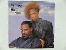 ALEXANDER O NEAL Feat CHERELLE Never knew love love like this 651369 7