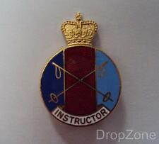British Military Army Air Force PTI Ski Instructor's Enamel Badge