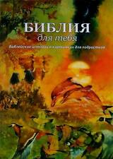 Bible for You Bible stories in pictures for teens Best-seller Russian 2009