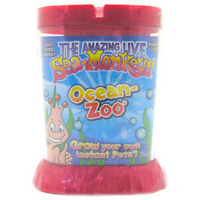 The Amazing Sea Monkeys Ocean Zoo -  Red Aquarium.