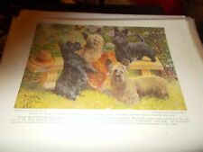 E Miner Scottish & Skye Terrier  bookplate 1936 National GeographicMagazine