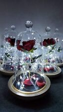NEW MOVIE STYLE Beauty and the Beast Rose Light Bell Jar Disney Lamp Light Night