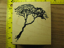 Rubber Stamp Desert Tree by Art Impressions Scene Building Stampinsisters #1195
