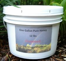 Fireweed Honey, Unfiltered. Raw, 1 gallon  bucket / 12lbs