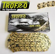TROFEO CATENA ORO X-RING 520 TRX 120 BMW G 650 X COUNTRY (K-15) 2008-2009