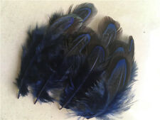 wholesale! 20-1000pcs beautiful natural pheasant feather 2-3 inches / 5-8 cm