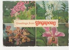 Greetings From Singapore Orchids 1981 Postcard 128a