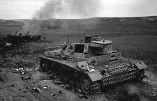 WWII B&W Photo Destroyed German Panzer IV Tank Tunisia Afrika Korps  WW2 /4102