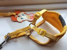 XS Dog Harness Lead Set Puppy Chihuahua Yorkie Jack Russell Adjustable 28-40cm