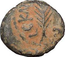 Porcius Festus  Jerusalem Nero Ancient  Greek / Roman Coin Palm branch   i36711