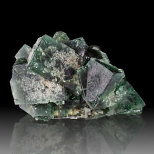 "3.2"" Rogerley Mine Sharp EmeraldGreen Cubic FLUORITE Crystals to 1.3""UK for sale"