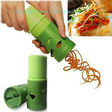 Kitchen Vegetable Fruit Shred Twister Cutter Spiral Slicer Peeler Garnish Tool