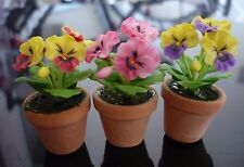 Set of 3  PANSY Flower Plant in Terracotta Pot Dollhouse Miniatures Garden