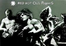 "RED HOT CHILI PEPPERS POSTER ""LIVE"""