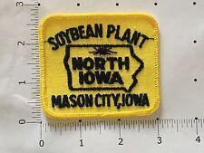Soybean Plant Patch - Mason City, Iowa - North Iowa