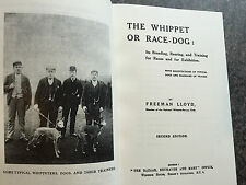 dogs whippets whippet racing lurchers coursing hares lloyd dog shows