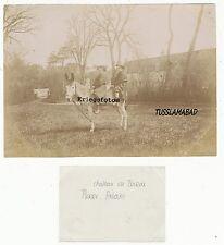 Chateau de Baron Frankreich ? Esel und Kinder Foto beschriftet TOP