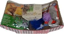Happy Kitten Cat Starter Kit w SCRATCHING PAD POST, CAT NIP, TOYS, OAT GRASS NEW