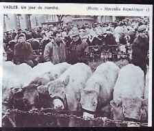 1972  --  JOUR DE MARCHE A VASLES   Z212