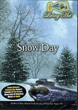 SNOW DAY: LIVING ART VIRTUAL CHRISTMAS HOLIDAY RELAXATION DVD w/ SOUNDS & MUSIC!