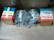 VINTAGE SNOWMOBILE NOS KAWASAKI  piston 1 PR 3000-225,13001-506 KING CAT?,EXT?