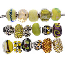 eART 15pcs Mix Murano Glass Beads Crystal Tibetan Fit European Charm Bracelet