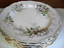 Royal Albert HAWORTH salad plate up to 8 available