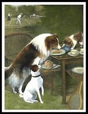 ROUGH COLLIE FOX TERRIER CAT STEALING FOOD GREAT VINTAGE STYLE DOG PRINT POSTER