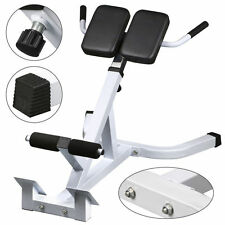 45° Extension Hyperextension Back Exercise AB Bench Gym Abdominal Roman Chair VP