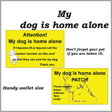 My pet dog is home alone card.