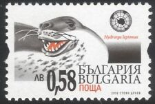 Bulgaria 2010 Leopard Seal/Antarctic/Marine Animals/Nature/Wildlife 1v (n45183)