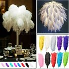 5pcs Real Large Ostrich Feathers For Craft Wedding Decorations 20~22 inch Length