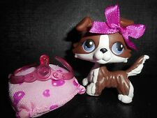 "Littlest Pet shop Chien Colley/ Collie Dog Puzzle "" Very good conditon """