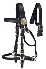 Australian Supreme Black Leather Bridle - Halter Combo with Reins
