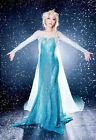 Queen Princess Frozen Elsa Costume Blue Long Dress for Cosplay Party (S/M/L/XL)